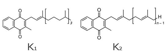 Vitamin K Structure